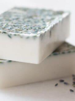 lavender honey soap bars