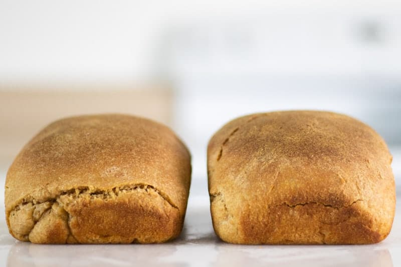 einkorn wheat sourdough bread