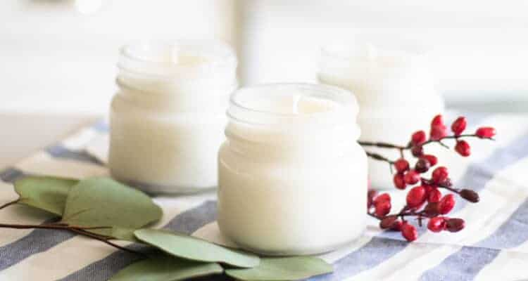 homemade candles with eucalyptus and cranberries in background