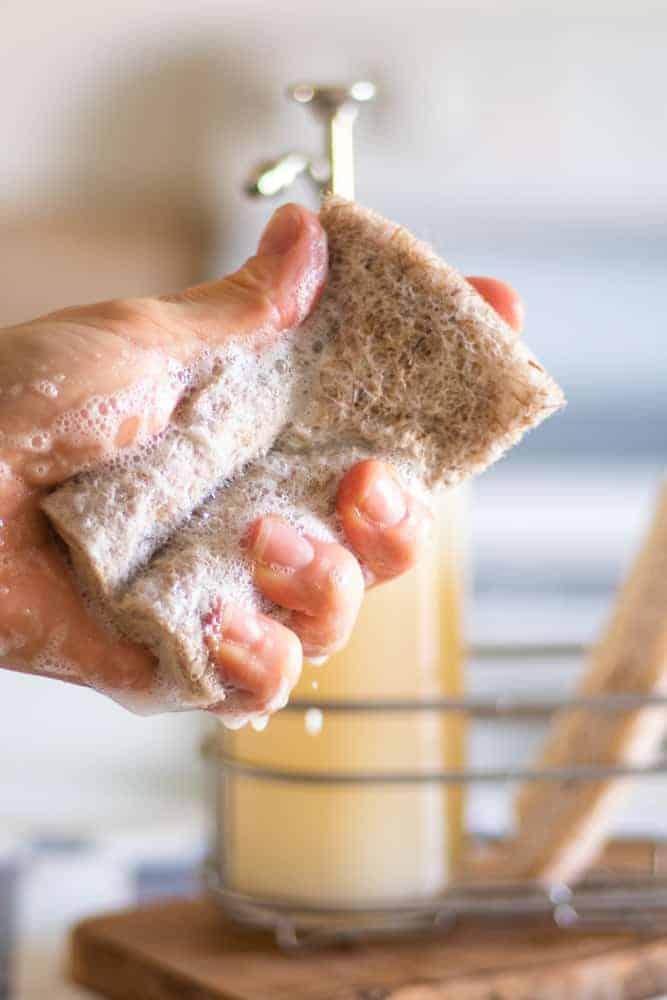 sudsing up dish soap in in a sponge