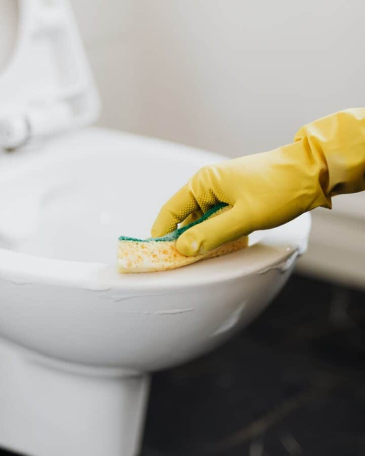 Homemade toilet cleaner being scrubbed out of on a toilet.